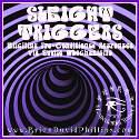 WB12 Sleight Triggers Webinar Audio Recording