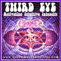 WB51 Third Eye Activation Webinar Audio Recording