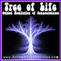 WB29 Tree of Life Webinar Audio Recording